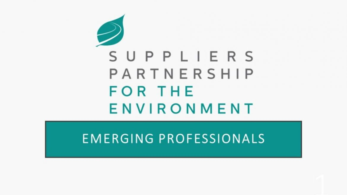 SP Forming New Emerging Professionals Work Group